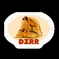 Dzrr 600x600